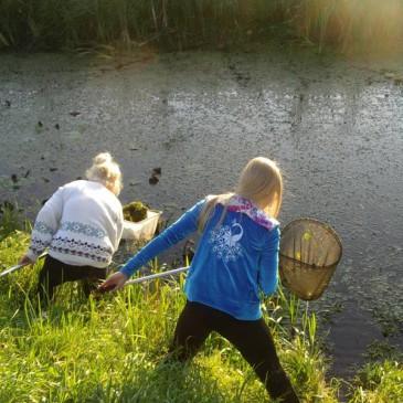 Esimesed praktikad loodusklassidele