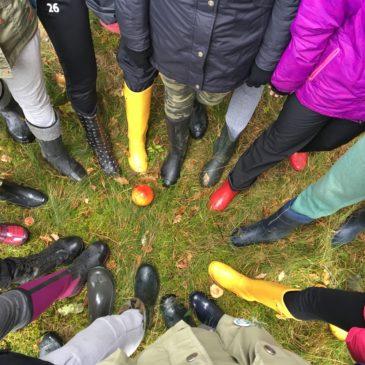 Ökoloogia ja keskkonnakaitse praktika