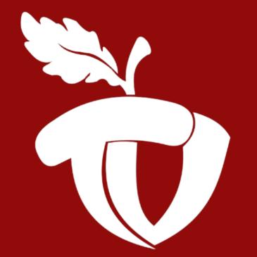 TammeTV sai omale logo!